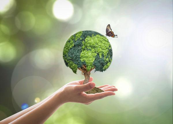 Sustainability-web