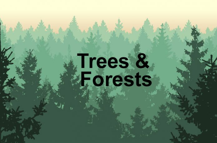 Trees-and-Forests-web