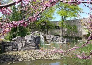 The Pond Inlet, Brock University